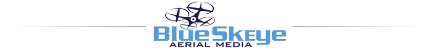 Moonlight Cinema Presenting Sponsor is Blue Skeye Aerial Media